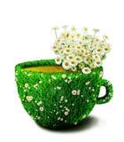 从草和花的药草浸剂杯子 免版税库存照片