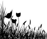 草和花,向量 免版税库存照片