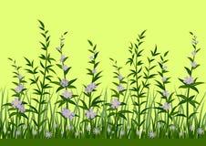 草和花,无缝 库存照片