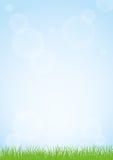 绿草和蓝天背景例证的领域 免版税库存图片