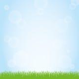 绿草和蓝天背景例证的领域 图库摄影
