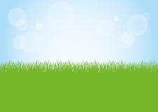 绿草和蓝天背景例证的领域 免版税库存照片
