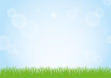 绿草和蓝天背景例证的领域 库存图片
