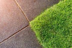 草和水泥地板概念 免版税库存照片