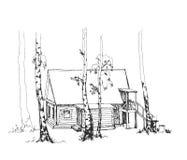 草图 与桦树和一个木房子的森林风景 向量 库存图片