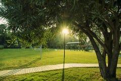 草地,绿叶调遣与足球操场在手段 免版税库存图片