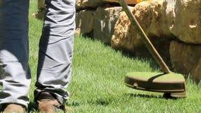 草坪串整理者
