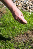 草坪关心 免版税库存图片