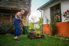 草坪割-夏天草坪割 库存图片