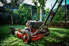草坪割-夏天草坪割 库存照片