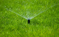 草坪喷水隆头 库存照片