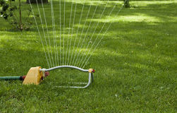 草坪喷水隆头 库存图片