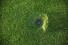 草坪喷水隆头 免版税库存照片