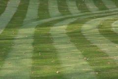 草坪新近地割了 免版税库存图片
