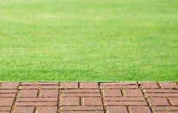 草坪步骤 免版税库存照片