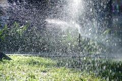 草坪浇灌 免版税图库摄影