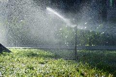 草坪浇灌 图库摄影