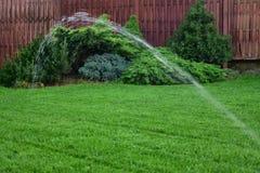 草坪灌溉 库存照片