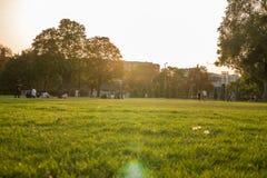 草坪的人们 图库摄影