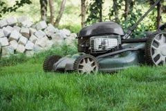 草坪被割 库存照片