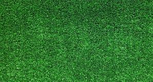绿草域 免版税库存图片