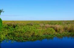 草大沼泽地国家公园佛罗里达河  免版税图库摄影