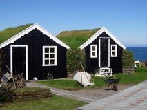 草安置传统冰岛的屋顶 免版税库存图片