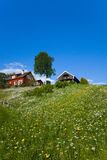 草小山房子 库存照片