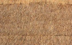 草屋顶。 免版税库存照片