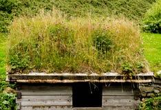 草屋顶在挪威 免版税库存照片