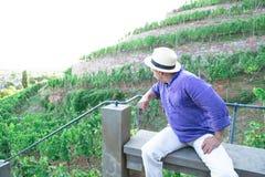 草帽的人在葡萄园里在长凳坐小山 库存图片