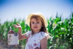 草帽的小女孩收集在桶的苹果 免版税库存照片
