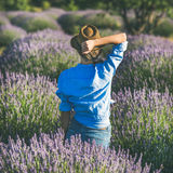 草帽的少妇享受淡紫色领域,方形的庄稼的 库存照片