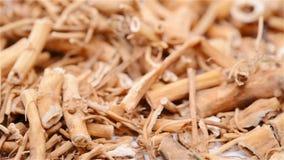 草本医学Baiqian或Cynanchi Stauntonii Rhizoma和根值或Willowleaf Swallowwort根茎和根转动和波城 股票视频