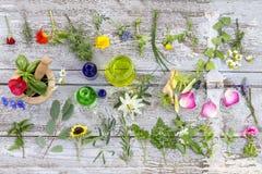 草本和新鲜的药用植物老白色木tboard的 药用植物为phytotherapyand健康做准备 免版税库存照片