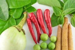 草本和辣成份做的泰国食物 库存图片