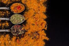 草本和香料选择-烹调,健康吃 免版税库存照片