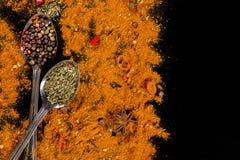 草本和香料选择-烹调,健康吃 图库摄影