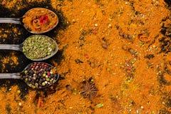 草本和香料选择-烹调,健康吃 库存图片