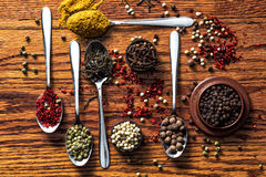 草本和香料选择-烹调,健康 免版税库存照片