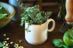 草本和年轻香豌豆花 库存图片