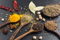 草本和spicies成份品种  干胡椒,芥末, o 库存照片