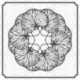 草本圆的设计元素 库存照片