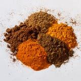 草本干燥粉末的品种颜色 免版税图库摄影