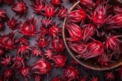 草本或食物概念的新红色Roselle用途 图库摄影