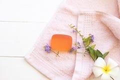 草本皮肤面孔的肥皂洗涤的医疗保健 库存图片