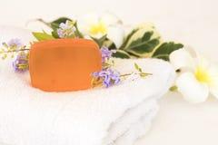 草本皮肤面孔的肥皂洗涤的医疗保健 库存照片