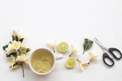 草本蜂蜜柠檬健康饮料heralth喜欢喉咙痛 免版税图库摄影
