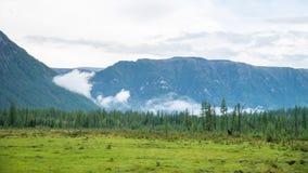 草甸、冷杉森林和山在多云天气,宽全景 俄罗斯,西伯利亚,东Sayan 布里亚特共和国 免版税库存图片