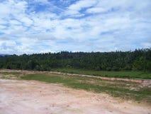 草甸、绿色树和地平线风景看法在村庄 库存图片